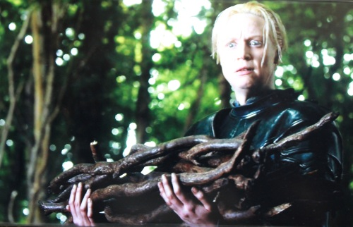 "Yet another reason to love Gwendolen Christie as Brienne: this utterly brilliant ""WTF?"" face."