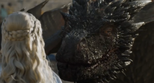 happy_drogon
